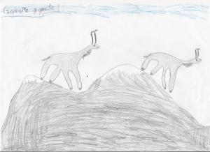 Gamuza gigante. Pleistoceno